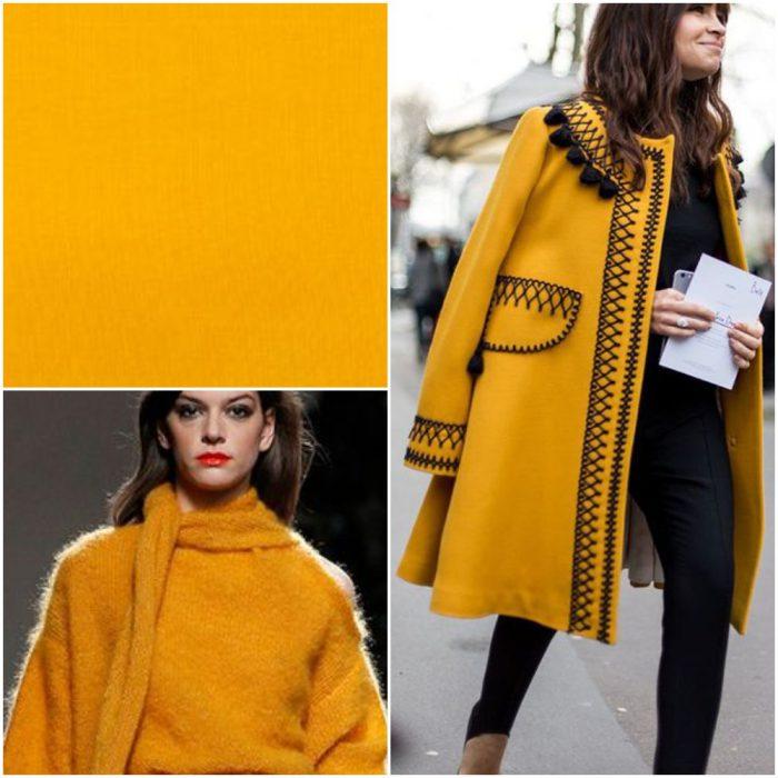 Hemerocalis Colores de moda invierno 2022