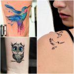 tatuajes de pajaross